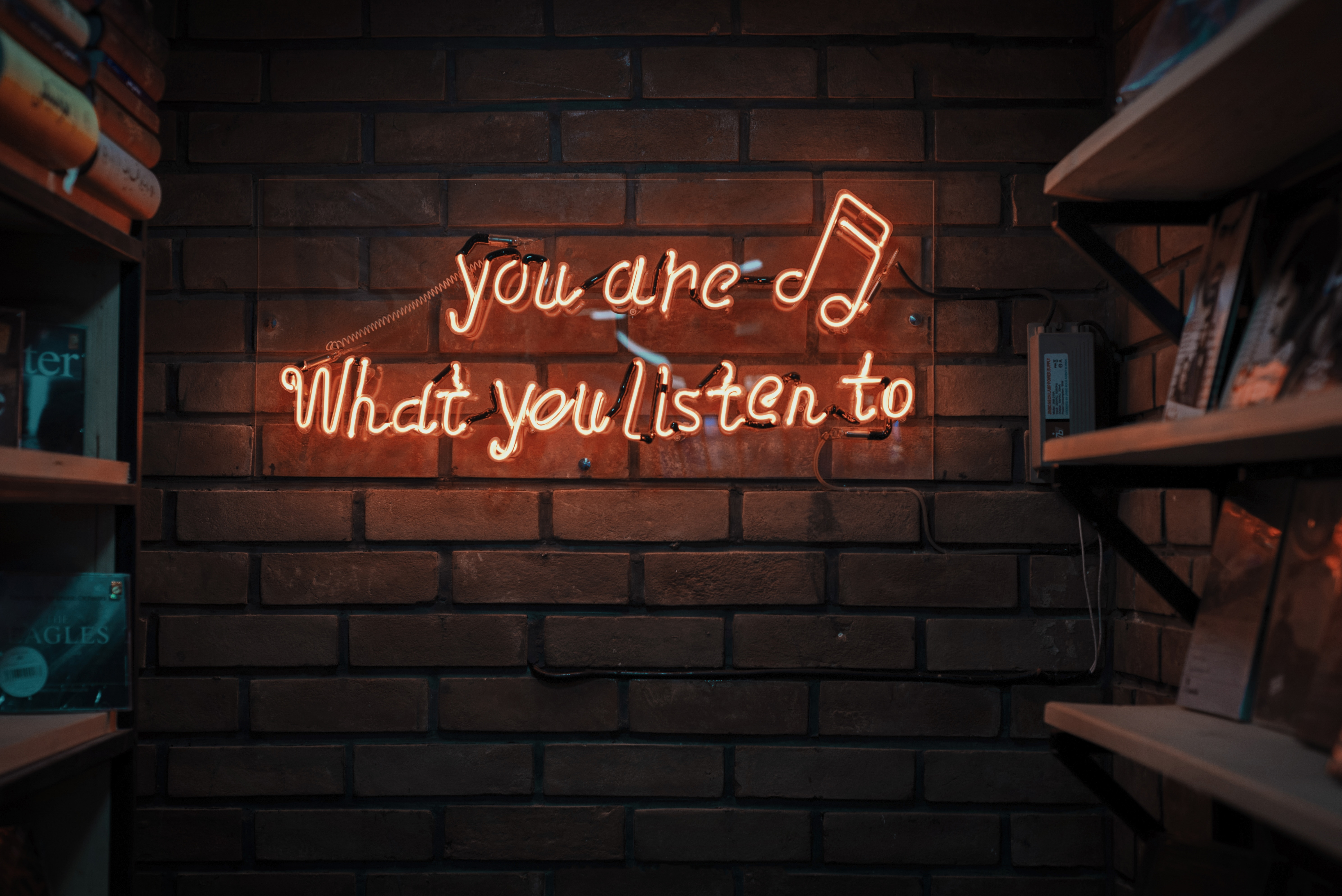 you are what you listen to image